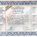 licenta IGP_resize